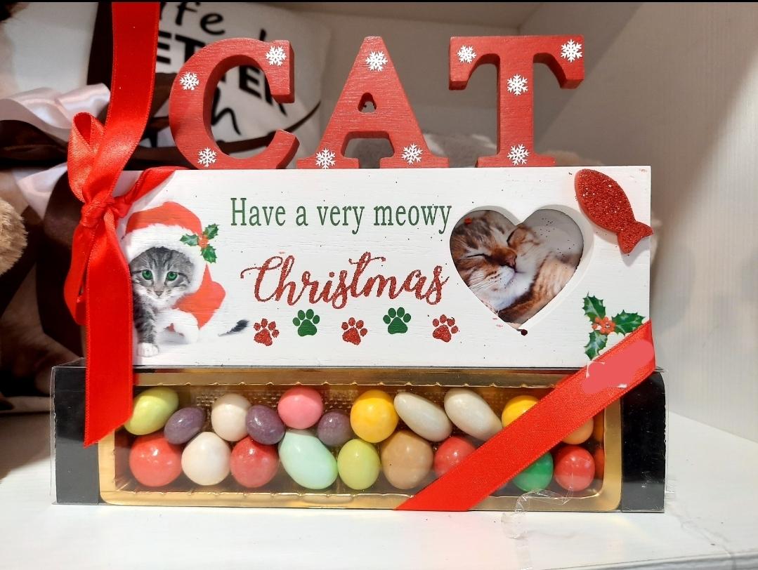 Portaritratti natalizio gatto con tenerelli