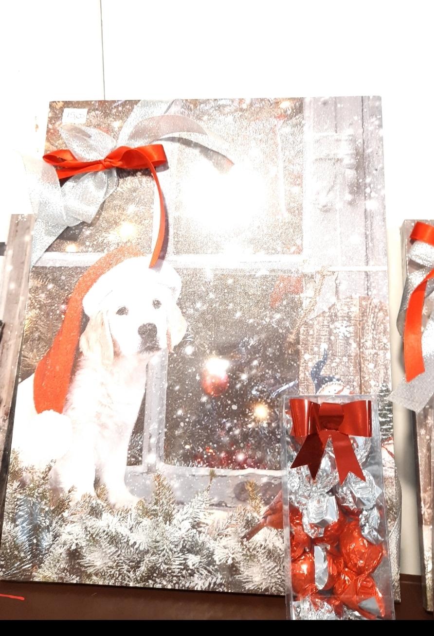 Quadro natalizio cane con luci led e cioccolatini