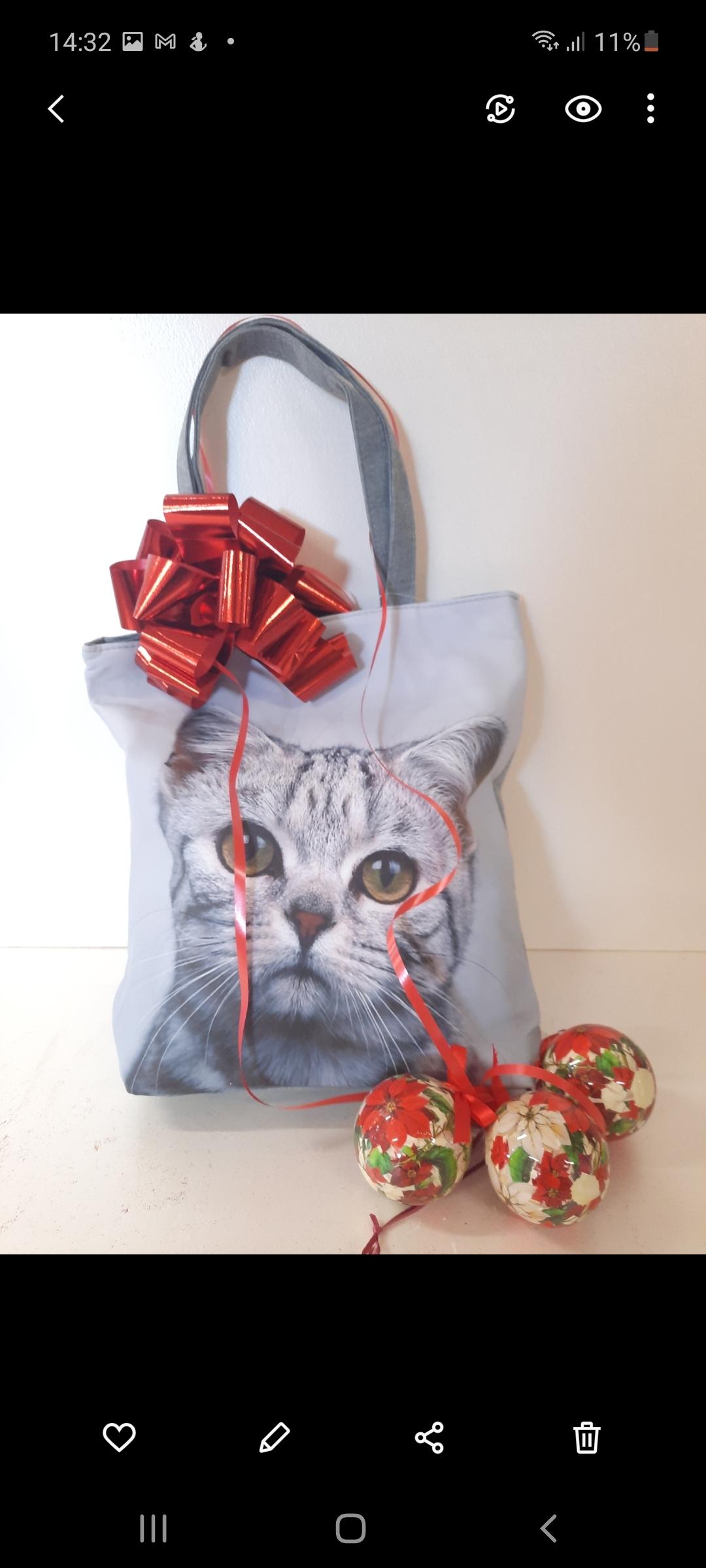Borsa gatto con all interno prodotti al cioccolato
