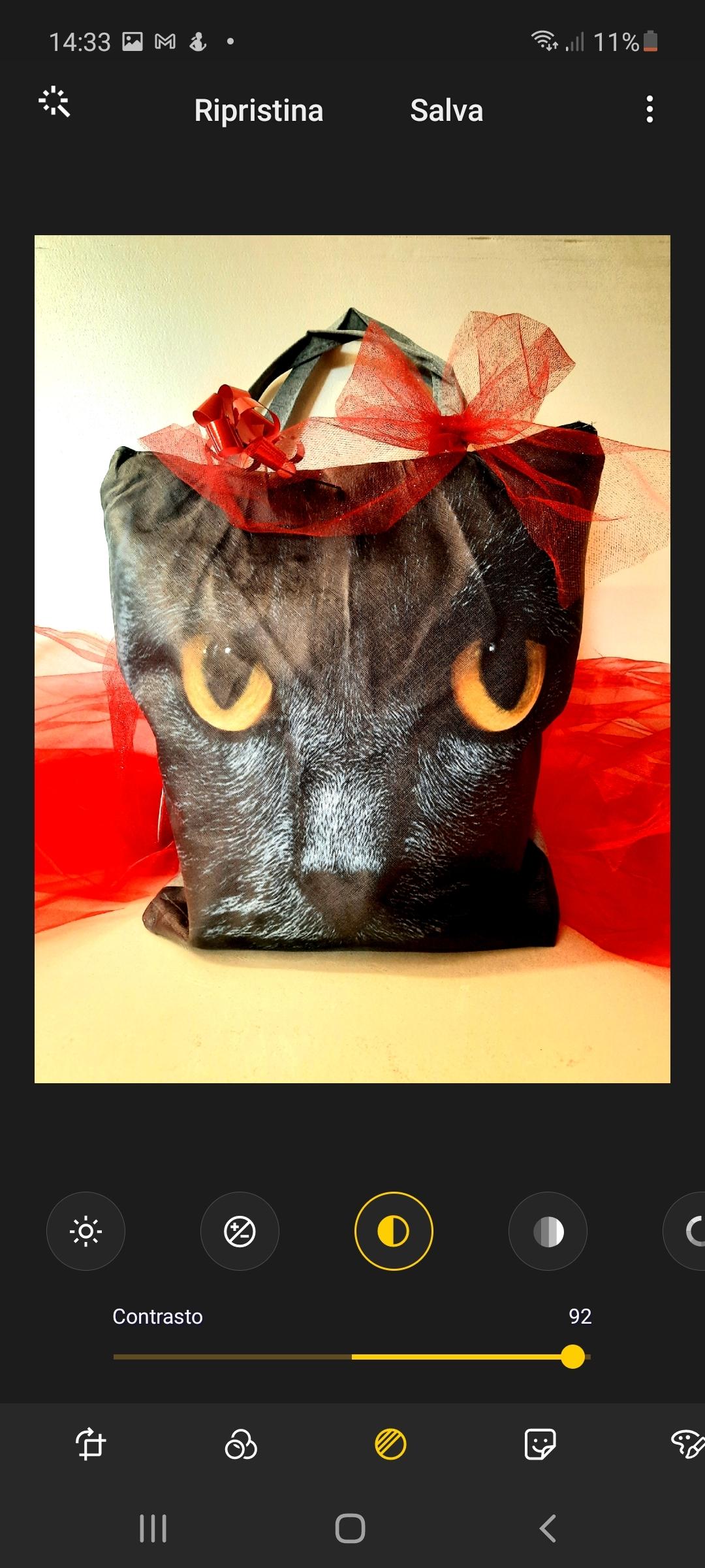 Borsa gatto nero con interno prodotti natalizi
